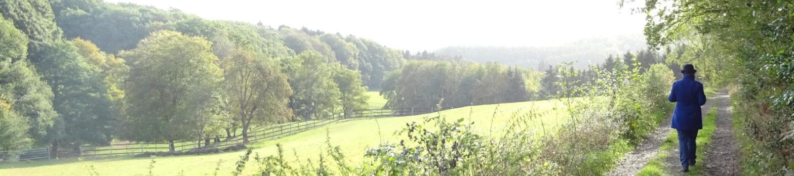 Ausflugsziele in Franken Headerbild