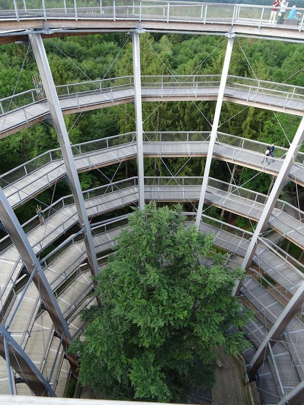 Baumwipfelpfad Steigerwald: Das Innere des Aussichtsturms